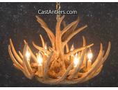 Whitetail 9 Verde Antler Chandelier