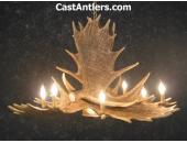 Moose 6 Cast Antler Chandelier w/ Downlight