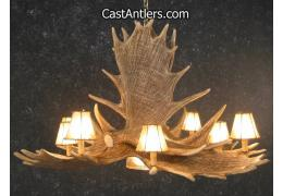 Castantlers moose antler chandeliers moose 6 cast antler chandelier w downlight rawhide shades mozeypictures Choice Image