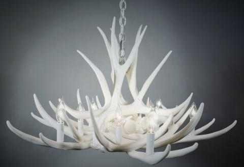 **Pure White** Mule Deer 9 Cast Antler Chandelier