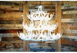 **Pure White**  Whitetail 42 Cast Antler Chandelier