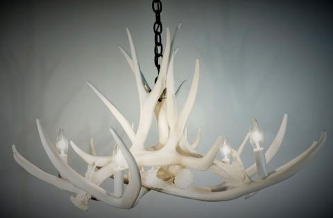 **Pure White** Mule Deer 6 Cast Antler Chandelier