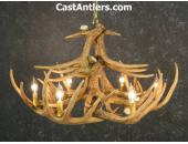 Whitetail 12 Cast Antler Chandelier