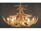 Whitetail 12 Cast Antler Chandelier w/ Downlight