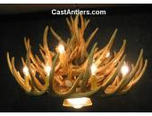 Whitetail 21 Cast Cascade Antler Chandelier w/ Downlight
