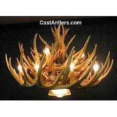 Whitetail 21 Cast Cascade Antler Chandelier w/ Downlight