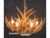 Whitetail 9 Cast Cascade Antler Chandelier w/ Downlight