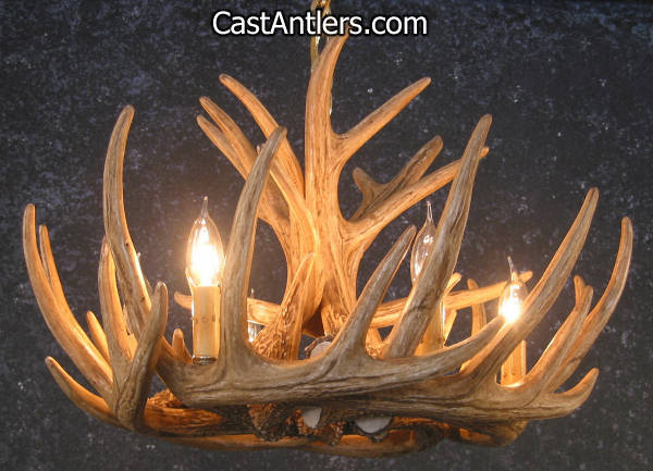 Antler chandeliers whitetail 9 castcade antler chandelier rustic whitetail 9 verde antler chandelier aloadofball Image collections