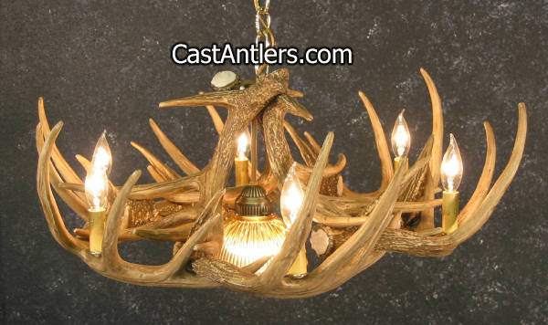 Antler chandeliers whitetail 9 cast antler chandelier w downlight hover to zoom aloadofball Images
