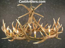 Click Here for Elk Antler Chandeliers