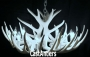 **Pure White** Whitetail 12 Cast Cascade Antler Chandelier