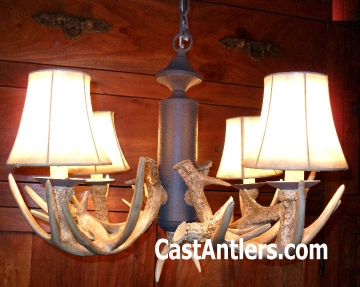 Antler Chandelier 4 Light Reproduction
