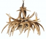 Whitetail 9 Large Antler Chandelier w/ Downlight