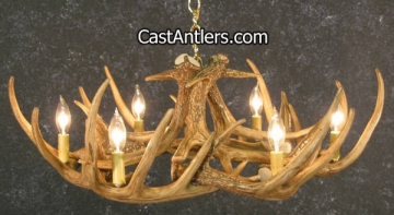 Whitetail 9 Cast Antler Chandelier