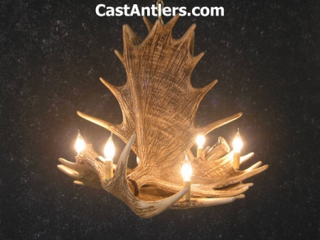 Moose 4 Cast Antler Chandelier