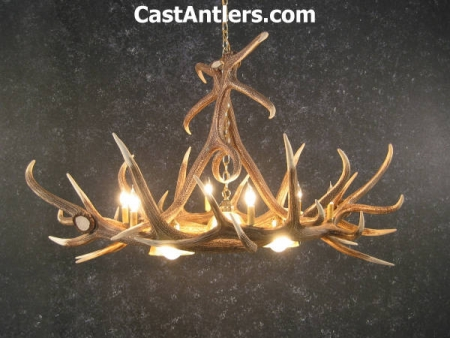 Elk 6 Cast Antler Chandelier w/ 3 Downlights