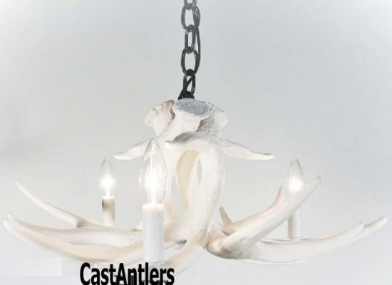 **Pure White** Whitetail 3 Cast Antler Chandelier/Pendant