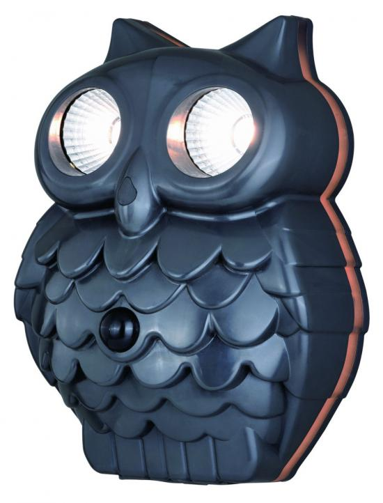 Owl Motion Outdoor Wall Light